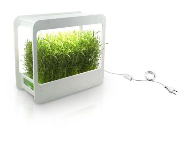 Kasvulamp taimedele LED