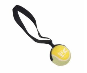 Koera mänguasi tennispall kummikäepidemega